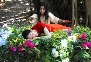 『真夏の夜の夢』1