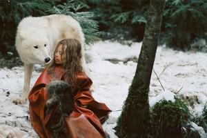 『ミーシャ ホロコーストと白い狼』1