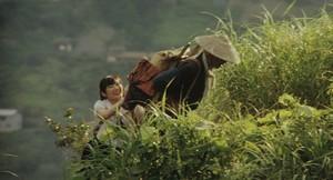 『祖谷物語 -おくのひと-』場面1