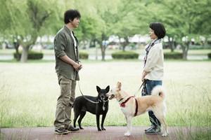 『犬に名前をつける日』場面1