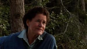 『レイチェルカーソンの感性の森』