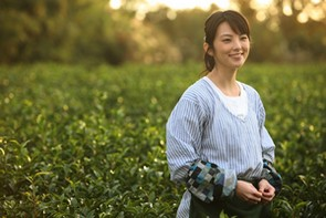『種まく旅人~みのりの茶~』4