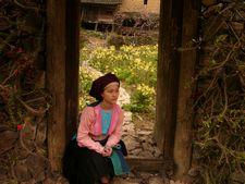 『モン族の少女 パオの物語』